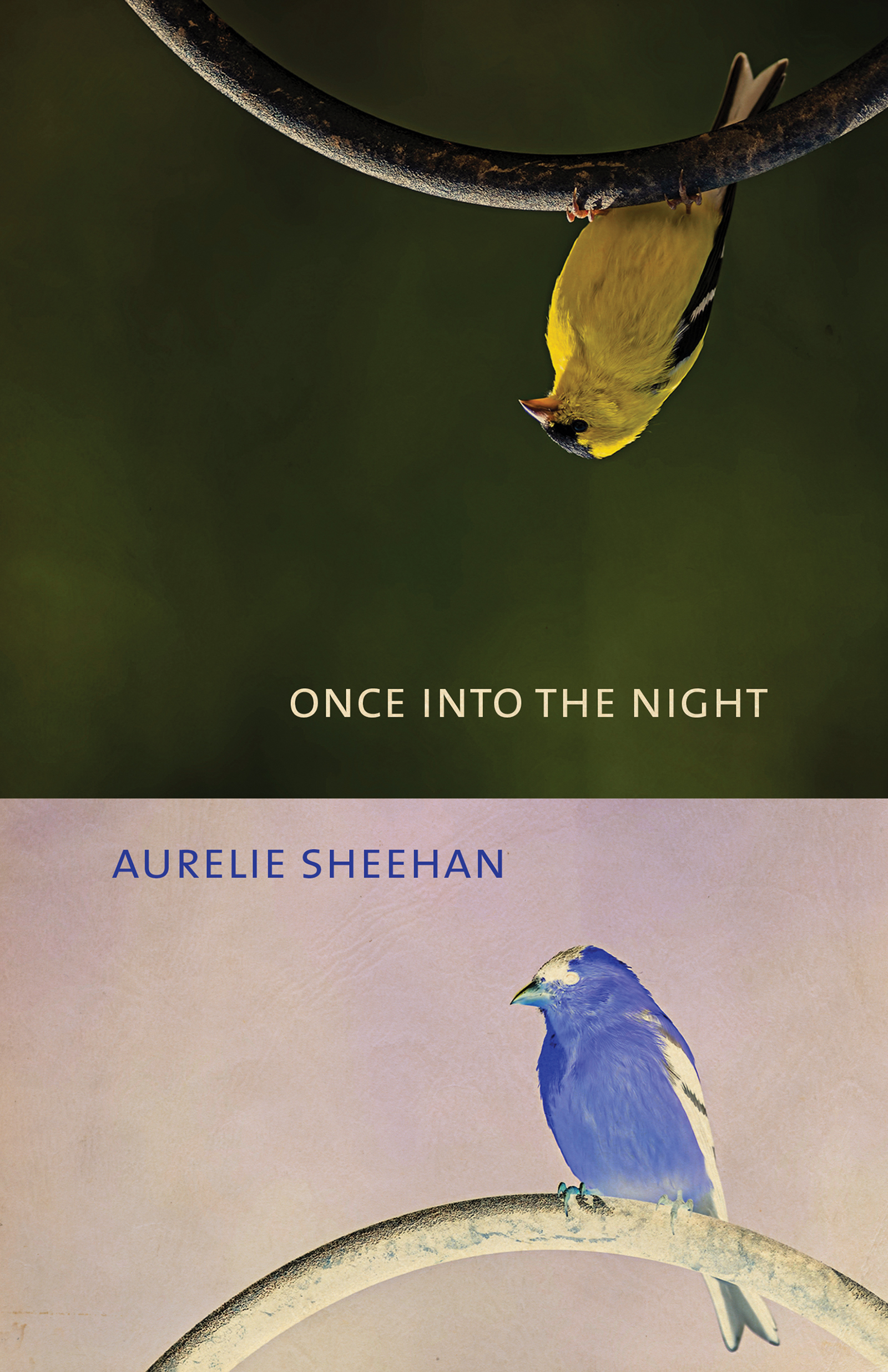 Once into the Night by Aurelie Sheehan
